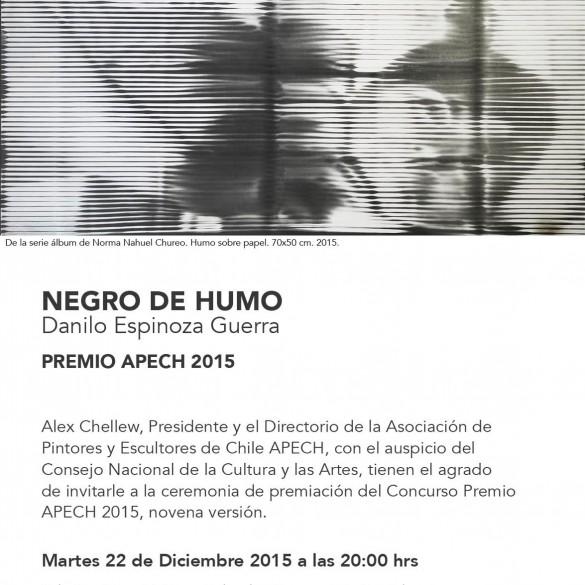 9º Premio APECH – 2015