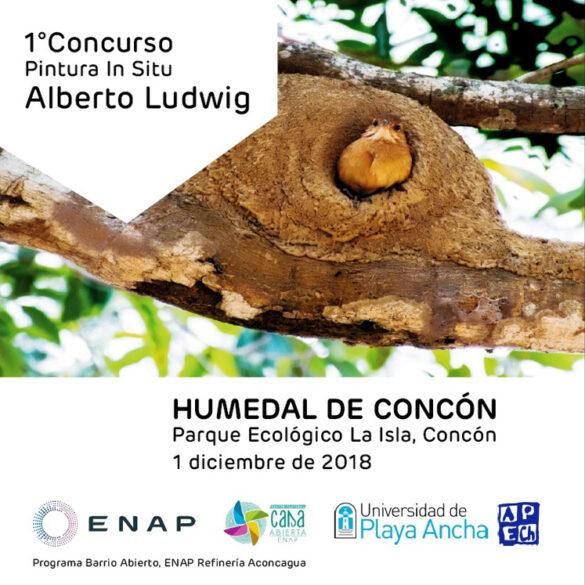 CONCURSO DE PINTURA IN SITU ALBERTO LUDWIG CON CON