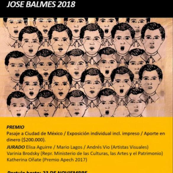 EXPOSICIÓN PREMIO APECH JOSE BALMES 2018
